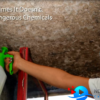Mold Removal Specialist Video