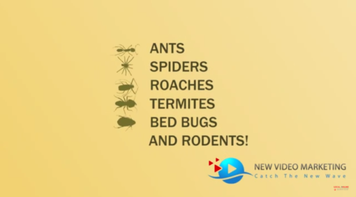 Pest Control Animated Video