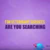 Veterinarian Kinetic Video