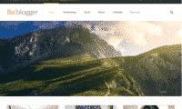 Professional Blogger Website