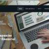 Professional Accountant Website