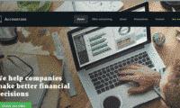 Professional Accountant Website