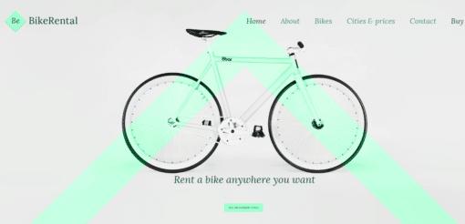 Professional Bike Rental Website