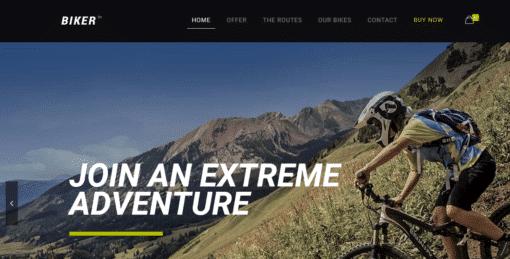 Professional Biker Website