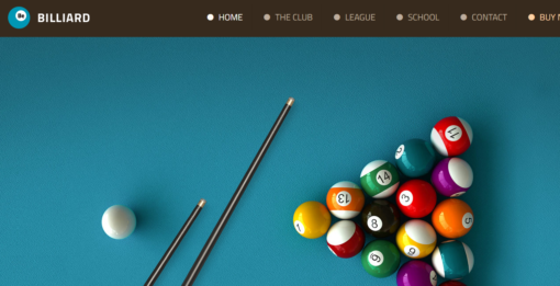 Professional Billiard Website