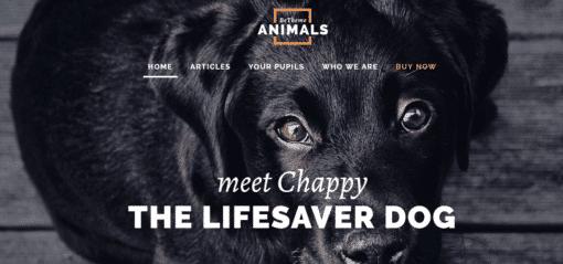professional animals website