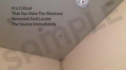 Water Proofing Expert